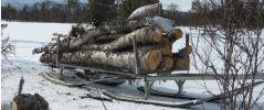 Tømmerdoning Robust tømmerdoning for skogsarbeid.